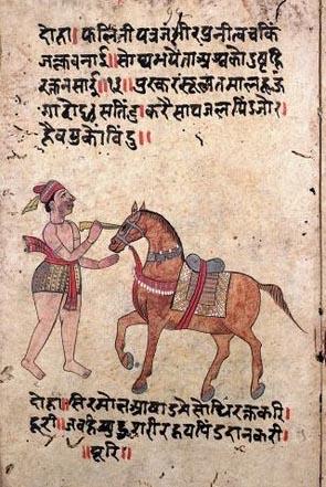 Ayurveda per cavalli