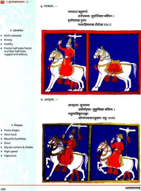 Ayurveda per cavalli - Animantia