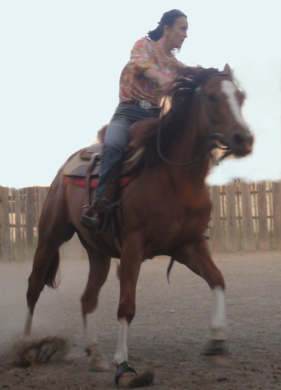 Natural horse training: Elena Bajona teaching Big Mama to be a horse again