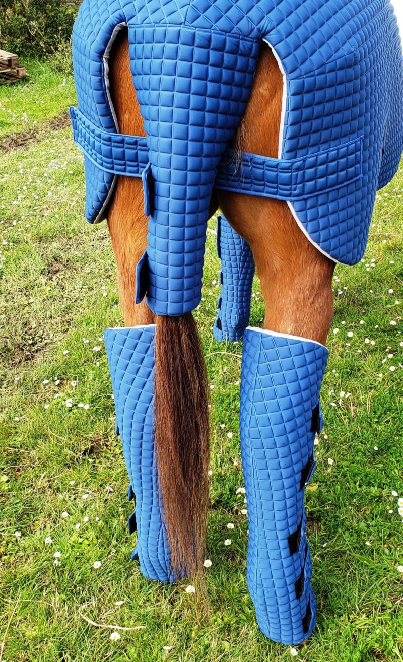 Back leg protections - Equine armour