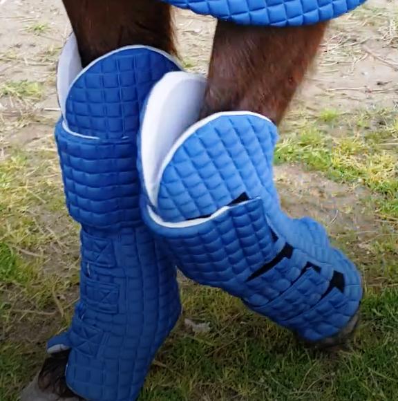 Leg Protection - Equine armour