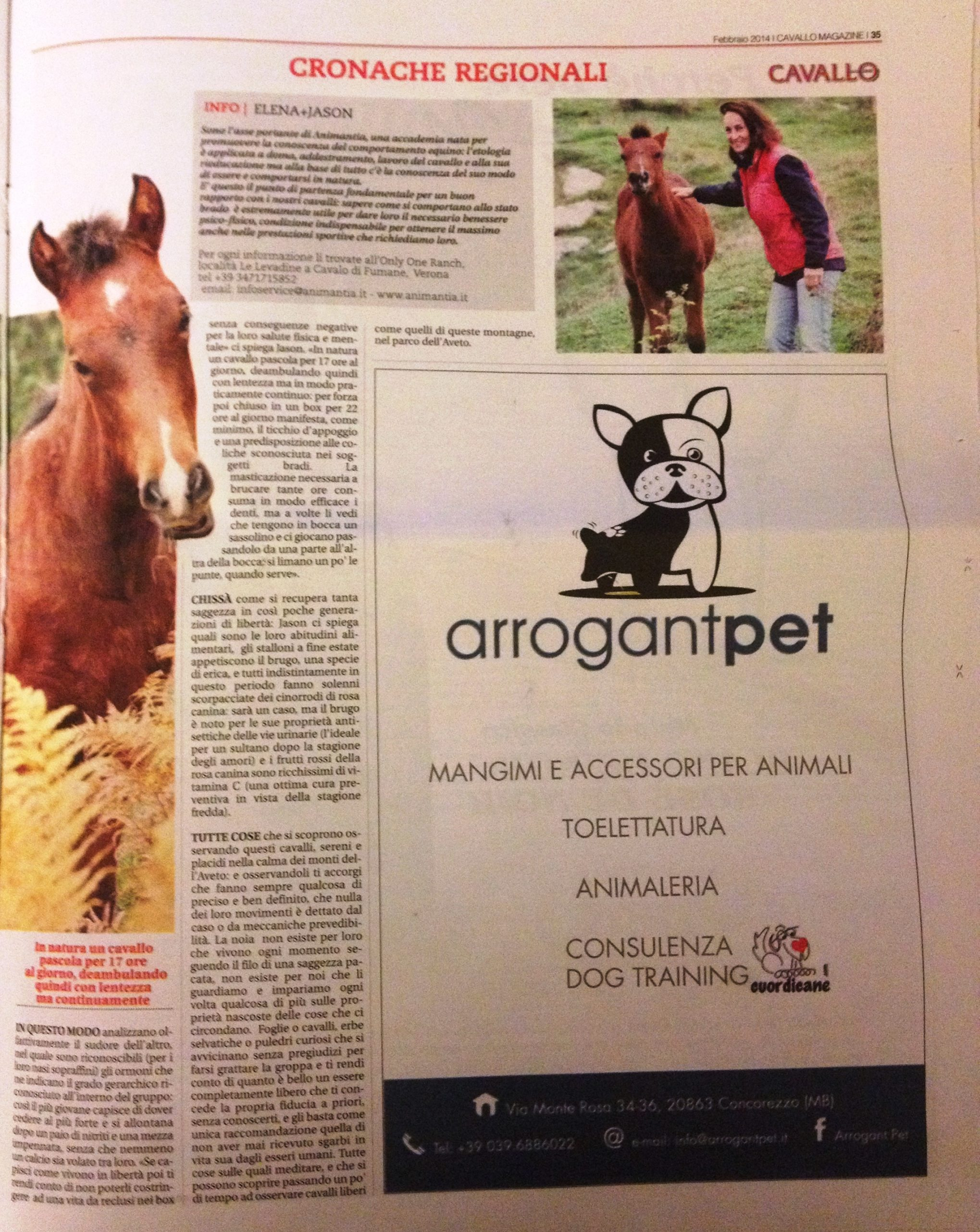 I cavalli Selvaggi in Liguria - Cavallo Magazine, Febbraio 2014