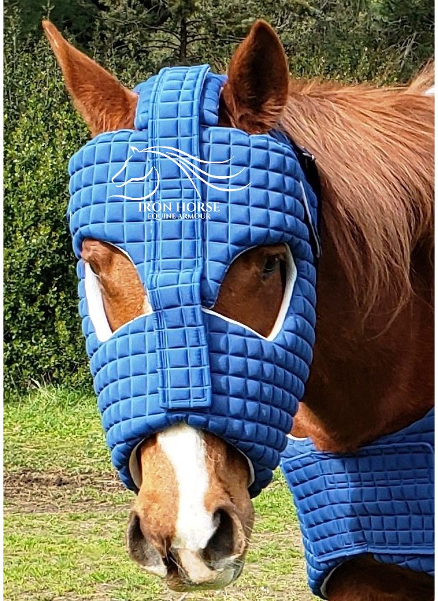 Helmet - Equine Armour