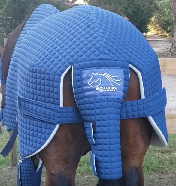 Back leg protection - Equine armour